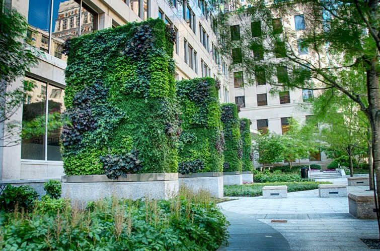 My Liberty Mutual Connection >> Home - Green Walls & Green Roofs - Plant Connection