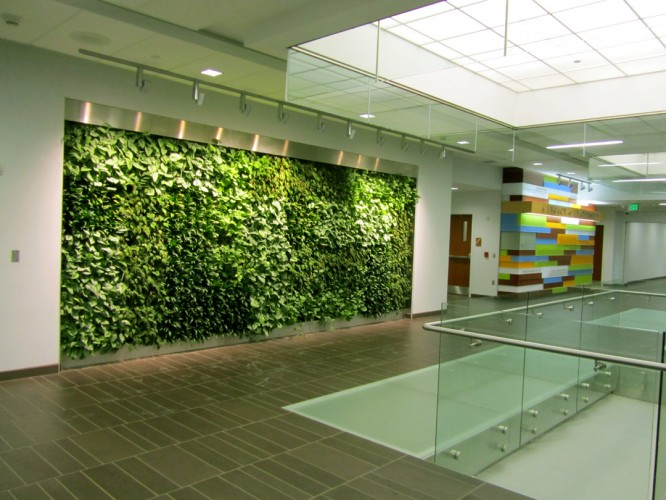 Excellent Green Living Wall 666 x 500 · 94 kB · jpeg