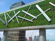 Benefits of green walls or vertical gardens green walls for Green wall advantages
